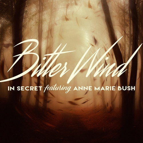 In Secret Feat Anne Marie Bush