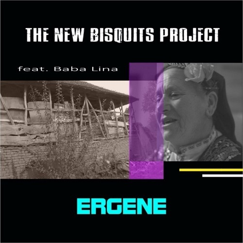 The New Bisquits Project Feat Baba Lina