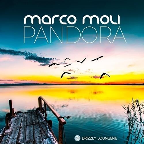 Marco Moli