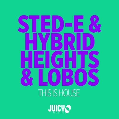 Sted-e & Hybrid Heights & Lobos