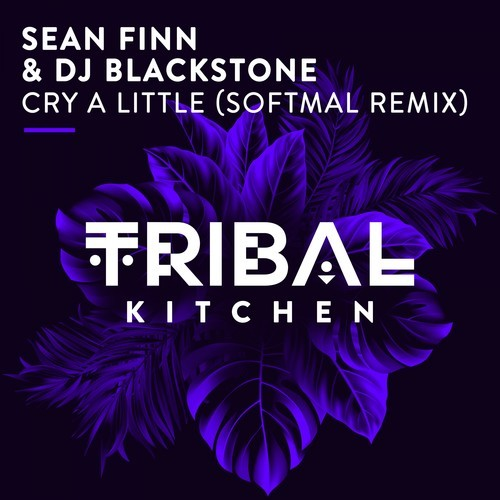 Cry a Little (Softmal Remix)