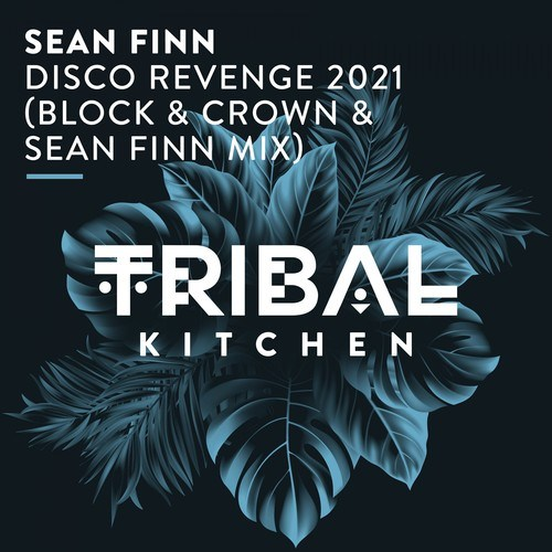 Disco Revenge 2021 (Block & Crown & Sean Finn Mix)