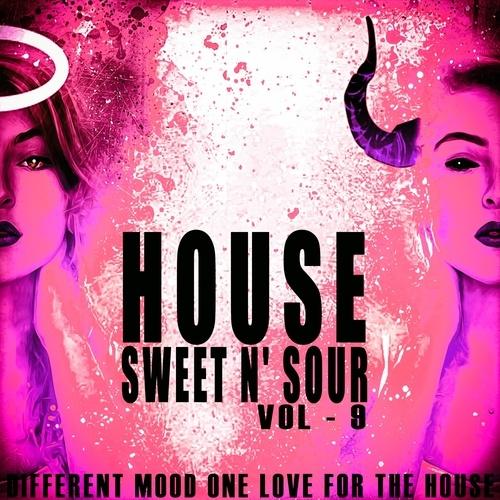 House Sweet N' Sour, Vol. 9
