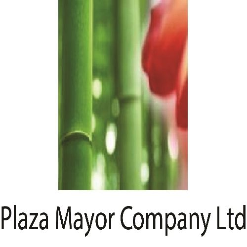Plaza Mayor Company